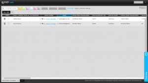 ginstr_app_relocationConsultant_EN-10