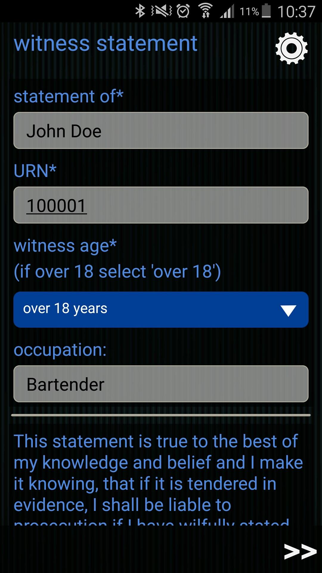 ginstr_app_witnessStatement_EN-2