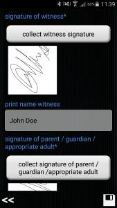 ginstr_app_witnessStatement_EN_5