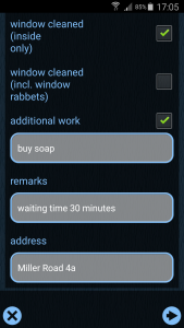 windowCleaningReport_EN_5