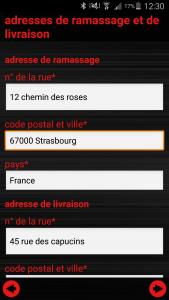 ginstr_app_relocationConsulting_FR_04