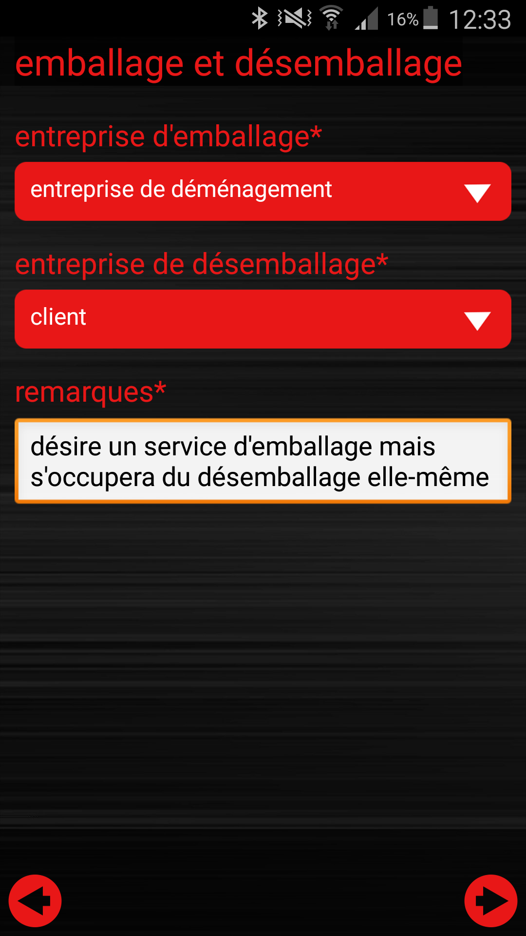 ginstr_app_relocationConsulting_FR_07